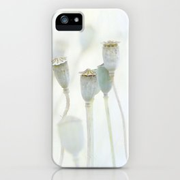Le Grazie iPhone Case