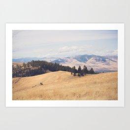 Montana Summer Art Print