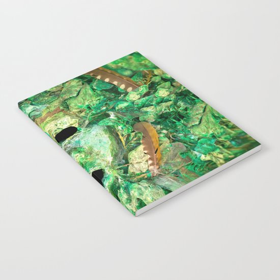 MASKED Notebook