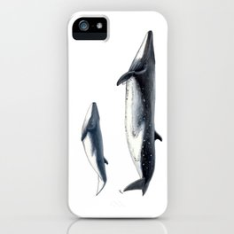 Bryde´s whale and baby whale iPhone Case