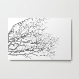 Lurking Metal Print