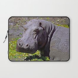Angry Hippo, Africa wildlife Laptop Sleeve