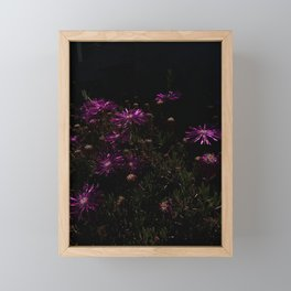 nighttime blooming Framed Mini Art Print