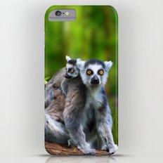 Ring Tailed Lemurs iPhone 6 Plus Slim Case