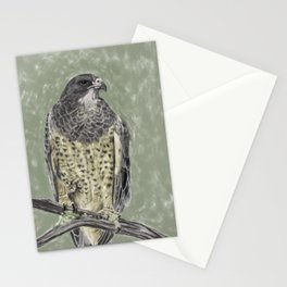 Black-chested buzzard-eagle (Geranoaetus melanoleucus) Stationery Cards