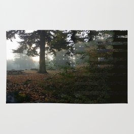 Divided In Fall (There Are No Picnics Here) Rug