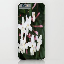 Delicate White Jasmine Blossom with Green Background iPhone Case