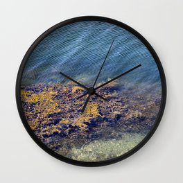 Aquatic Wall Clock