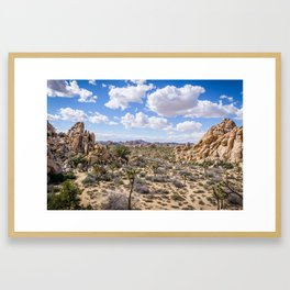 High and Dry in Joshua Tree Framed Art Print