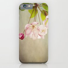 Spring's Promise Slim Case iPhone 6s