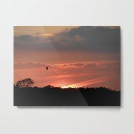 A Bird at Sunset Metal Print