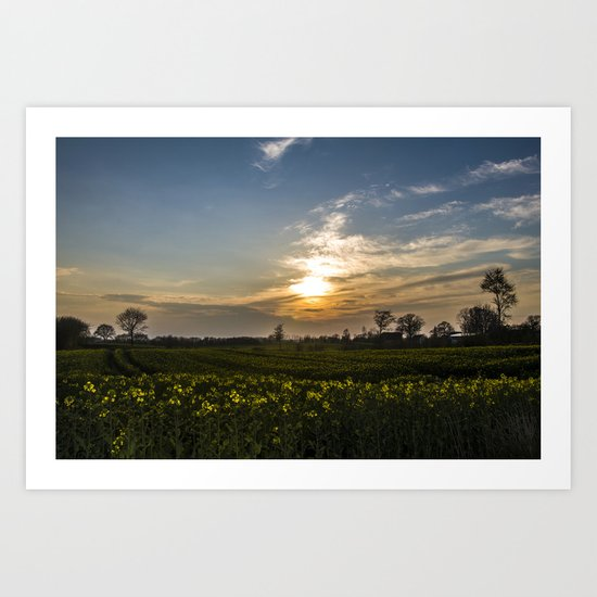 sunset on the yellow field Art Print