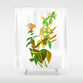 Green Black Flycatcher Shower Curtain