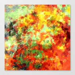 Transformations XX Canvas Print