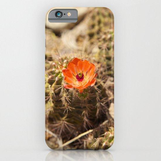 Cactus Flower (Portrait) iPhone & iPod Case