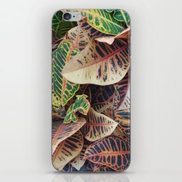 Crotons iPhone Skin
