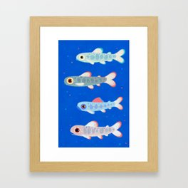Trouts Framed Art Print