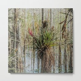 Unexpected Beauty Metal Print