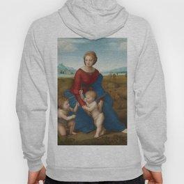 """Raffaello Sanzio da Urbino """"The Madonna of the meadow"""", circa 1506 Hoody"""