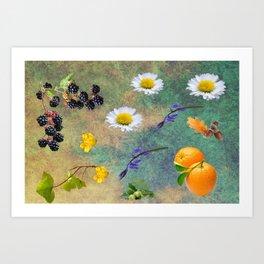 Natures Mix. Art Print