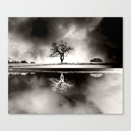 SOLITARY REFLECTION Canvas Print