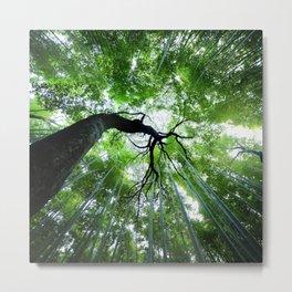 Arashiyama Metal Print