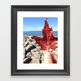 Beautiful little Things Framed Art Print