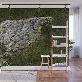 STONES LICHEN NUGGET Wall Mural