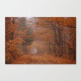 Autumn Path Canvas Print