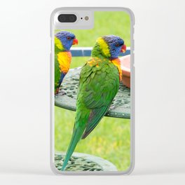 Rainbow Lorikeets Clear iPhone Case
