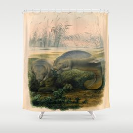 Vintage Scientific illustration, c. 1880 (Manatees) Shower Curtain