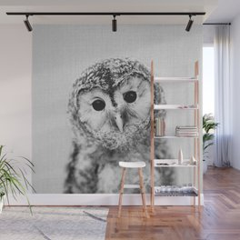Baby Owl - Black & White Wall Mural