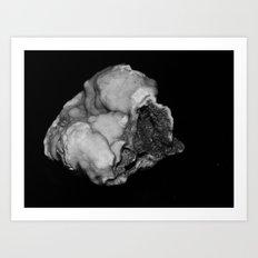 fake asteroid 1 Art Print
