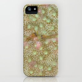 Goby whispers iPhone Case