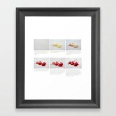 Watercolor Demo Cherries on a Cushion Framed Art Print