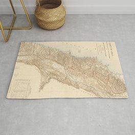 Vintage Map of Lebanon (1862) Rug