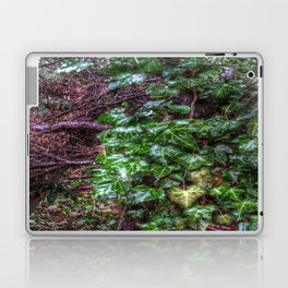 Gnarled vines & Ivy on a Misty Day Laptop & iPad Skin