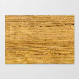 Old wooden boards Canvas Print