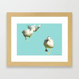 Ducks in a hurry Framed Art Print