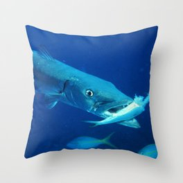 Barracuda eating its prey Throw Pillow