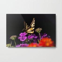 Garden Swallowtail Metal Print