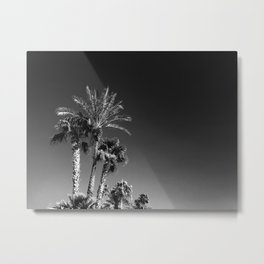 palms of arizona Metal Print
