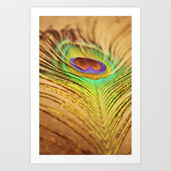 Feathered Finery Art Print