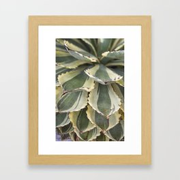 Agave in Yellow & Green Framed Art Print