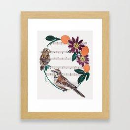 The Lark and the Sparrow and maypop Framed Art Print