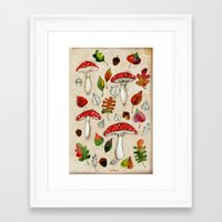mushrooms Framed Art Prints featuring Mushrooms by Minasmoke