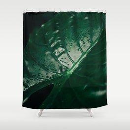 Primavera 03 Shower Curtain