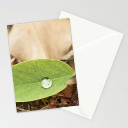 Summer drops Stationery Cards