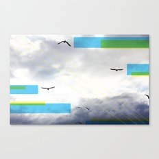 Birds and Lines Canvas Print