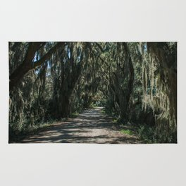 Georgia Spanish Moss Road Rug